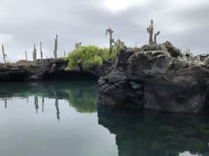 Los Tuneles in the Galapagos
