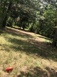 Frisbee Golf in Charlotte North Carolina