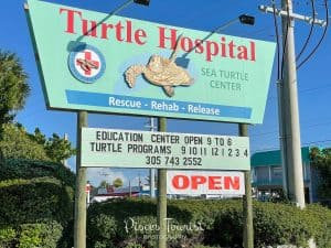The Turtle Hospital in Marathon Florida