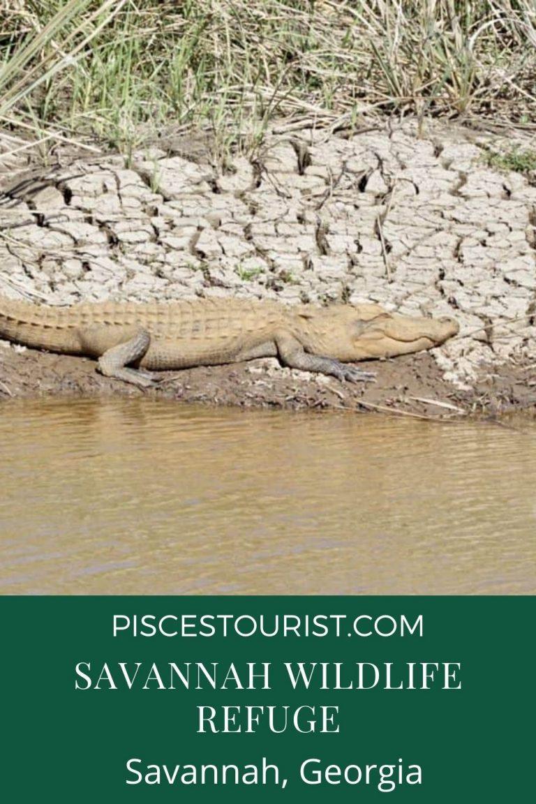 Savannah Wildlife Refuge