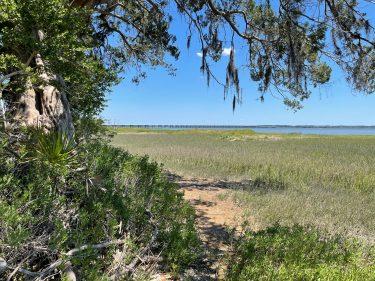 Widgeon Point Preserve View