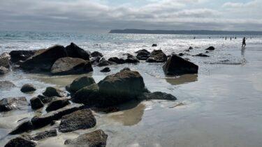 Coronoda_Beach_San_Diego_Pisces_Tourist
