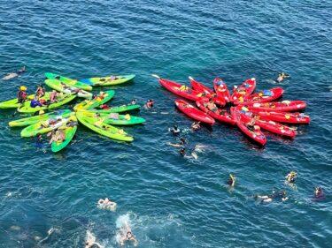 Kayak_Snorkel_in_La_Jolla_San_Diego_Pisces_Tourist