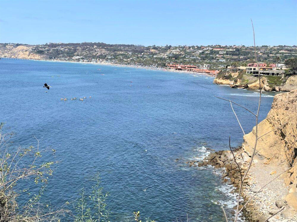 La_Jolla_Coves_Scenic_View_San_Diego_Pisces_Tourist_1