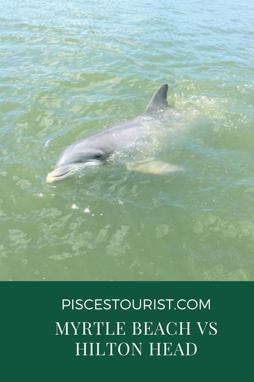 Myrtle+ Beach +vs + Hilton+ Head+Pisces+Tourist