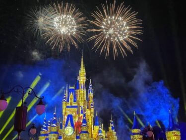 Can_ You_ Go_ to_ Magic_ Kingdom_ Just_ For_ Fireworks?