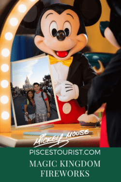 Mickey+Mouse+Selfie+Pisces+Tourist_1
